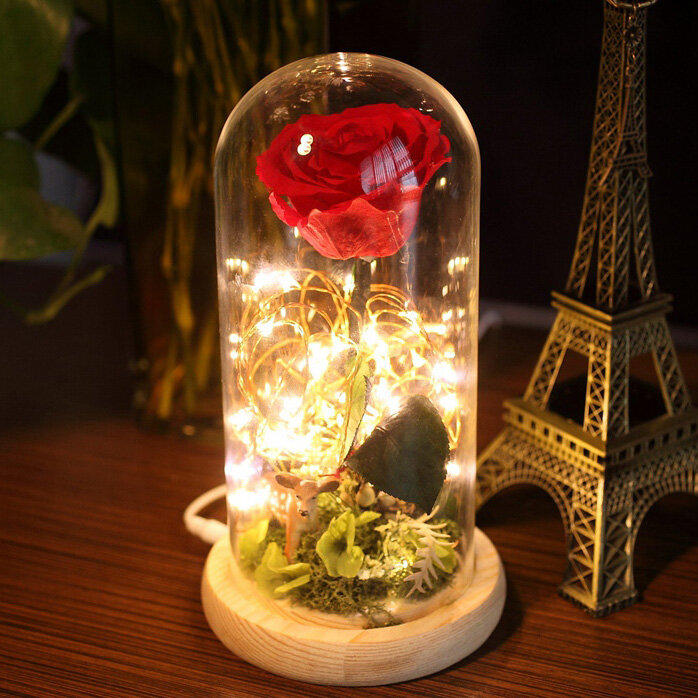 Para Ella Preserved Fresh Rose Flower With Fallen Petals In Gl Dome On Wooden Base Is Multicolor Newchic