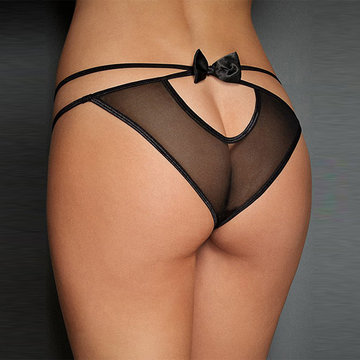 Sexy Hollow Out Mesh Briefs Panties