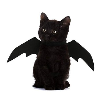 Halloween Pet Dog Cat Bat Wings Costume